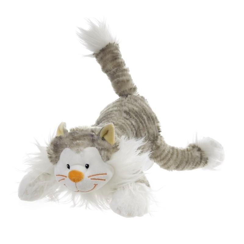 Balthazar, le petit chat